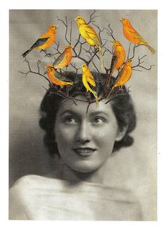 Cut & paste collage (paper on paper). Collages, Surreal Collage, Collage Artists, Photomontage, Salvador Dali, Mixed Media Collage, Art Plastique, Digital Collage, Bird Art