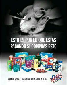 Si amas a los animales, elige las marcas que no se enriquecen con la vida de ellos