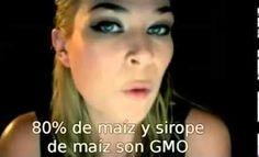 Digamos no a los OGM (Organismos Genéticamente Modificados)