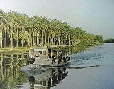 Basra -Iraq