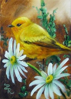 The American yellow warbler-- Other than in male breeding plumage and body size, all subspecies are very similar. Winter, female and immature birds all have similarly greenish-yellow upper sides and are a duller yellow below. Painting by: Paulie Rollins