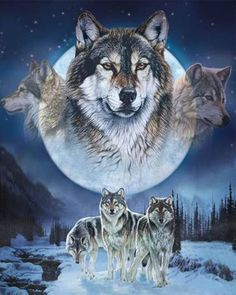DealCrafty Wolf Brothers Paint By Numbers Kit P25007, 16x20inch / 40x50cm-Without Framed Oil Painting Pictures, Pictures To Paint, Queen Size Blanket, Wolf Artwork, Wolf Spirit Animal, Wolf Wallpaper, Wolf Pictures, Wild Wolf, Beautiful Wolves