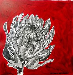 Hermien Van Der Merwe;  Title: Fynbos:  Table Mountain Fynbos 1 Medium: Pen-and-Ink drawing on paper with oil paint background Size: 200 x 200mm