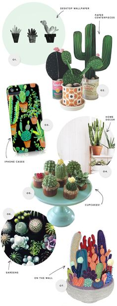 Cactus Inspiration | Oh Happy Day!