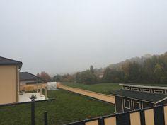 Laufend gebloggt: Morgenlauf Wagwiesental
