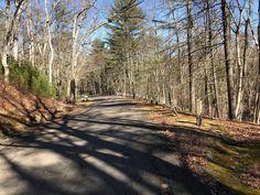 Old style guardrails. Quabbin Reservoir. Ware, Massachusetts. Paul Chandler March 2018.