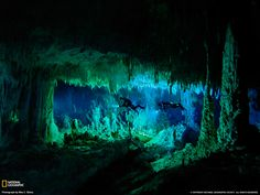 Underwater cave in the Bahamas, featured in National Geographic. Great article!