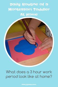 Montessori Materiaal - pengreep, motoriek, vormen.