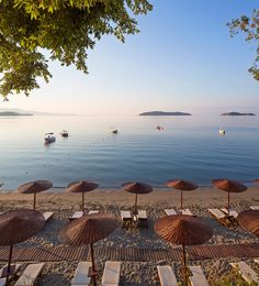 Vassilias beach, Skiathos -Such a beautiful beach! Greece Tours, Greece Travel, Places Around The World, Around The Worlds, Places To Travel, Places To Go, Skiathos Island, Bay Photo, Greece Islands