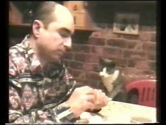 This cat uses sign language to ask for more noms