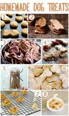 Are your dog's treats killing your monthly budget? Try making one of these homemade dog treat recipes!