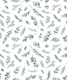 This delicate design featuring different types of foliage in shades of grey and green is a lovely choice for a baby nursery, child's bedroom or the home. Wallpaper Paste, Wallpaper Samples, Wallpaper Roll, Green Leaf Wallpaper, Unique Wallpaper, Kindergarten Wallpaper, Eco Friendly Paper, Nursery Wallpaper, Green Park