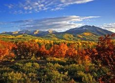 The 10 Best Fall Foliage Trips In The U.S.