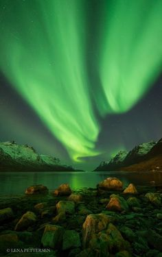 """Aurora Borealis in Kvaløya, #Norway """"The northern lights appeared early in the evening, and continued for a long time through the night. At times it was quite intense, and it lit up the area. It was a nice evening, and now when the snow has fallen on the top of the mountains, it lightens up the landscape."""""""