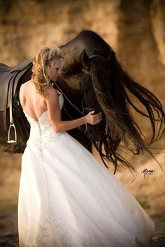 Lovely Bride and Friesian