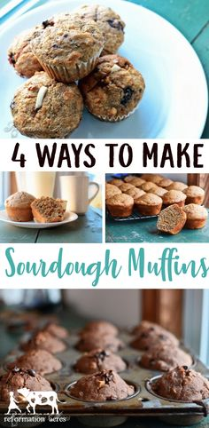 Get 4 ways to make Sourdough Muffins using 1 basic overnight preferment so you have less work and wait in the morning! Chocolate Chocolate Chip Sourdough Muffins, Banana Nut Sourdough Muffins, Apple Cinnamon Muffins, and Berry Muffins! Sourdough Muffin Recipe, Sourdough Recipes, Sourdough Bread, Apple Cinnamon Muffins, Berry Muffins, Real Food Recipes, Cooking Recipes, Oats Recipes, Recipies