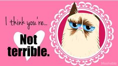 Valentines For Everyone! Grumpy Cat has the perfect way to say 'I love you' without getting sentimental about it.