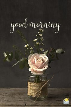 Our installment of original good morning pictures is one of the best ways to help everyone start their day on the sunny side. Good Morning Texts, Morning Thoughts, Good Morning Picture, Good Morning Messages, Good Morning Greetings, Good Morning Good Night, Good Morning Wishes, Happy Morning, Romantic Good Morning Quotes