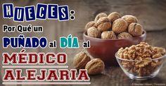 """Entre todos los frutos secos, las nueces pueden ser """"el rey"""" porque mejoran la salud de varias maneras. Aquí están siete beneficios de las nueces. http://articulos.mercola.com/sitios/articulos/archivo/2014/06/28/7-beneficios-de-las-nueces.aspx"""