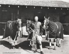Leslie Howard and three of his polo ponies Leslie Howard, Blonde Moments, Glamour Photo, Classic Movie Stars, Mans Best Friend, Equestrian, Pony, Horses, Animals