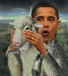Huge political statement right there. Lol.    Obviously the (edited) photo is saying that President Obama is a wolf in sheep's clothing. Depending on if the viewer agrees with this opinion or not, the photo could be comical or enraging. Basically the photo is saying he's not such a good president.