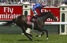 Makybe Diva, ridden by Glen Boss wins the 2005 Melbourne Cup from On a Juene and Xcellant. Time 3:19.1