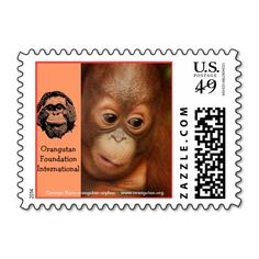 >>>Low Price Guarantee          	George Orangutan Orphan Stamps           	George Orangutan Orphan Stamps online after you search a lot for where to buyHow to          	George Orangutan Orphan Stamps lowest price Fast Shipping and save your money Now!!...Cleck Hot Deals >>> http://www.zazzle.com/george_orangutan_orphan_stamps-172725381498644392?rf=238627982471231924&zbar=1&tc=terrest