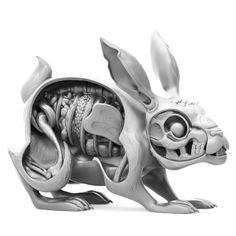 "Nychos × Mighty Jaxx's ""Lepus Pellis Os Omentum"" Dissected Rabbit"