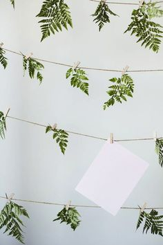 Love this idea for escort cards but instead of ferns, use colorful flowers and hang upside down by stems