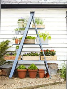 How easy is this .... one ladder (suitably painted) plus three planks of wood and some rather charming plant boxes.