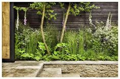 The Cloudy Bay Chelsea garden 2014 by Andrew Wilson and Gavin McWilliam. Photography by Paul Childs.