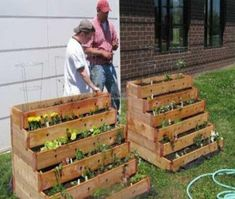 Gardening with Pallets