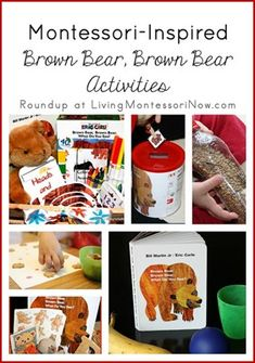 Montessori-Inspired Brown Bear Activities (from Homeschool Creations)