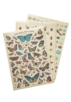Awe Naturel Print Set. Let your love for winged critters take flight with this stunning set of prints! #multi #modcloth