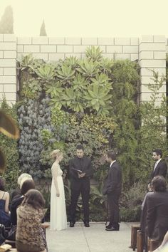 living wall wedding backdrop - Google Search
