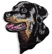 Dogs- Rottweiler - Iron On Embroidered Applique/Pets, Animals, Best ...
