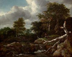 Forest Scene (Jacob van Ruisdael, c. Widener Collection, National Gallery of Art, Washington DC) Dutch Painters, Oil Painters, Landscape Art, Landscape Paintings, Dutch Golden Age, National Gallery Of Art, Vintage Wall Art, Figure Painting, Painting Techniques