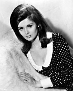 Browse photos of Pamela Tiffin Old Hollywood Glamour, Golden Age Of Hollywood, Vintage Hollywood, Sheree North, Pamela Tiffin, Famous Photos, Classic Actresses, Retro Hairstyles, 1960s Fashion
