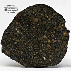 Most Common Type of Meteorite | NWA 1152, carbonaceous chondrite.