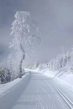 Muhteşem kış manzaraları
