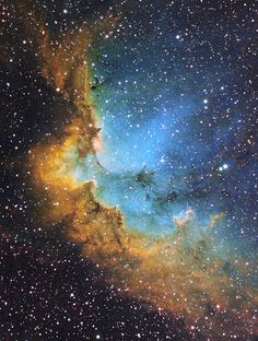 NGC7380 - The Wizard Nebula | by Daniele Malleo
