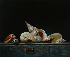 Still life with shells 2 - Roman Reisinger
