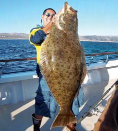 Huge halibut being caught off California! - Seatech Marine Products / Daily Watermakers Huge halibut being caught off California! Deep Sea Fishing, Gone Fishing, Fishing Boats, Halibut Fishing, Monster Fishing, Rockfish, Fishing World, Vintage Fishing Lures, Fish And Meat