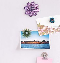 Brooches-to-fridge magnets