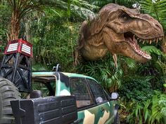 Universal Studios Islands of Adventure, Orlando: Fossils are great and all, but if you'd rather get up close with a more lively bunch of dinosaurs, you can do just that at Universal Studios Islands of Adventure in Orlando. The Jurassic Park River Adventure ride takes you through the world of Jurassic Park, including a close encounter with a T-Rex and an 85-foot plunge.