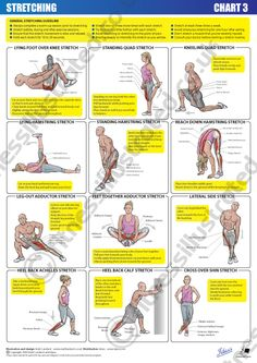 Fitness Illustrated - Instructional exercise illustrations from illustrator Matt Lambert