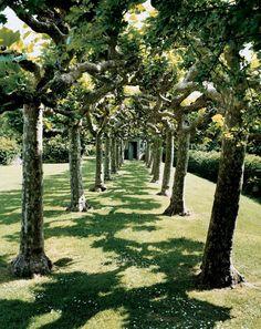 The Best Gardens in _Vogue_