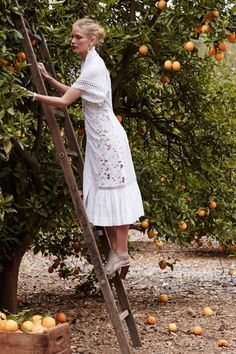 Sunlace Shirtdress by Byron Lars Beauty Mark from Anthropologie Alfredo Wagner, Fashion Scout, Byron Lars, Cotton Shirt Dress, Mode Vintage, Poses, The Dress, Editorial Fashion, Casual