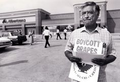 Cesar Chavez leads a picket Monday, August 13, at the Albertson's grocery store at 6401 Abrams Road. Description from photographyblog.dallasnews.com. I searched for this on bing.com/images