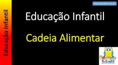 Educação Infantil - Nível 4 (crianças entre 7 a 9 anos): Cadeia Alimentar